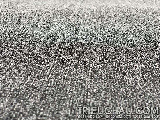 Hình ảnh thảm trải sàn Roll Carpet mã TC 20