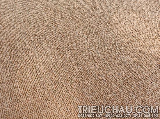 Hình ảnh thảm trải sàn Roll Carpet TC mã 12